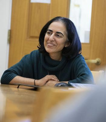 Q&A With Indu Singh, Dean of Teaching and Learning